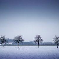 зима :: Руслан Маркс