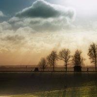 солнечные лучи :: Руслан Маркс