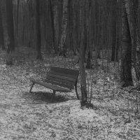 Одиночество :: Ольга Рощектаева