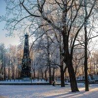Зимний парк смоленск :: николай смолянкин