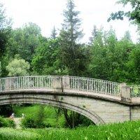 Мостик в парке Павловска :: Самохвалова Зинаида