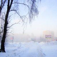 ...про туман ...Сибирь ...мороз ... :: Мила Бовкун