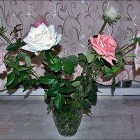 Розовый букет :: Нина Корешкова