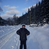 Прогулка по зимней дороге :: Нина Килина