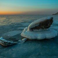 Замерзшая раковина :: Сергей Данила