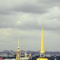 Ст.-Петербург. :: Елена