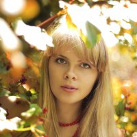 Листва :: Анастасия Сидорук