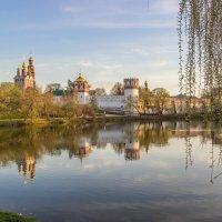 Новодевичий монастырь :: Elena Ignatova