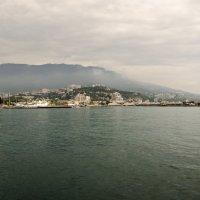 Набережная и порт города Ялта :: Михаил Шенин