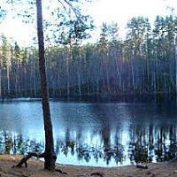 Лесное озеро.Карельский перешеек... :: Надежда Элпис