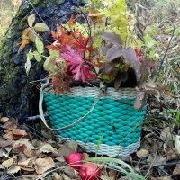 Я собрала букет осенних листьев.... :: nadyasilyuk Вознюк