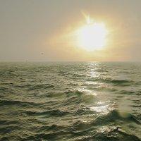 Зимняя Атлантика :: Михаил Лобов (drakonmick)