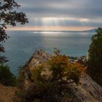 Ялта Крым :: Alex Yalta