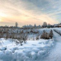 Зимний рассвет. :: Оксана Ермихина