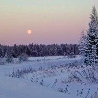 Дорогой зимнею :: Валерий Симонов