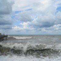 Волны бушуют, и ветер шумит! :: nika555nika Ирина