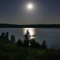Лунная ночь. :: Наталья Юрова