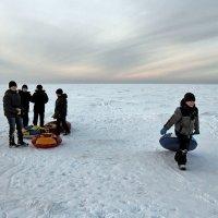 Северодвинск. Субботние развлечения. Белое море и беломорцы :: Владимир Шибинский