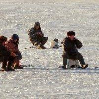 Рыбаки с сотоварищами. :: Владимир Гилясев