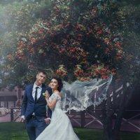 Свадебное настроение :: Юлия Алей