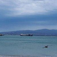 Незнакомые  суда пережидают непогоду в бухте :: Валерий Дворников