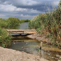 Река Корсак :: Нилла Шарафан