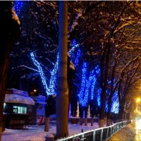 Вечерние огни в зимнем городе... :: Тамара (st.tamara)