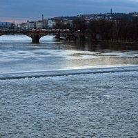 Красные трамваи на мосту Легионов :: Татьяна [Sumtime]