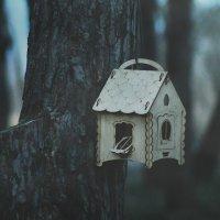второй кадр одиночества.. :: Юлия Кутовая