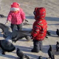 Дети и голуби - счастье ! :: Мила Бовкун