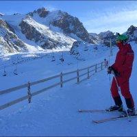 Лыжник. :: Anna Gornostayeva
