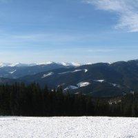 вид с горы Довга в Буковели :: Сергей Л