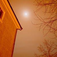 Дом,дерево,луна. :: Виталий Дарханов