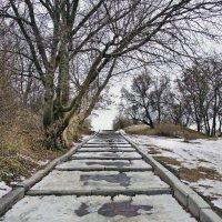 Дорога в небеса обетованные... :: Наталья Костенко