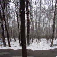 Вспоминая зиму прошлогоднюю - 3 :: Андрей Лукьянов