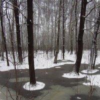Вспоминая зиму прошлогоднюю - 1 :: Андрей Лукьянов
