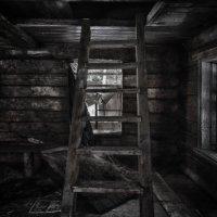 дом в лесу :: Владислав Кравцов