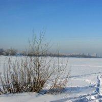 Сибирские просторы :: раиса Орловская