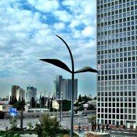 Тель-Авивские картинки. :: Leonid Korenfeld
