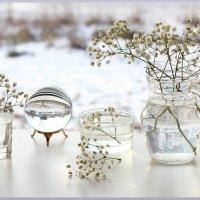 Зимний натюр :: Татьяна Беляева