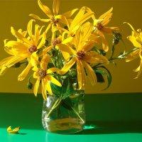 Желтые цветы :: Larisa Simonenkova