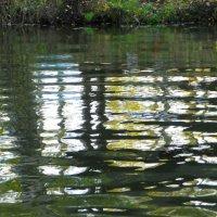 Краски на реке. :: Святец Вячеслав