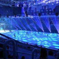 Ледовое шоу :: nika555nika Ирина