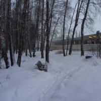 IMG_1722 - В Москве - снег :: Андрей Лукьянов