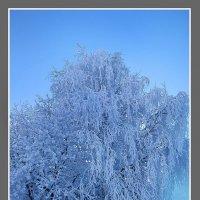 Зима. :: Евгений Усатов