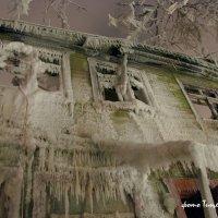2010 год музей спалили в Царицино :: Михаил Тищенко