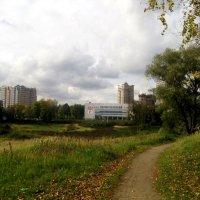 Из парка в город :: Елена Семигина