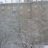 А снег идёт... :: Татьяна Юрасова