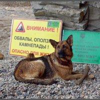 """Заборонено! Заповідний пляж """"військового значення"""" :: Кай-8 (Ярослав) Забелин"""