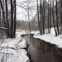 Еще - из прошлой зимы (2) :: Андрей Лукьянов
